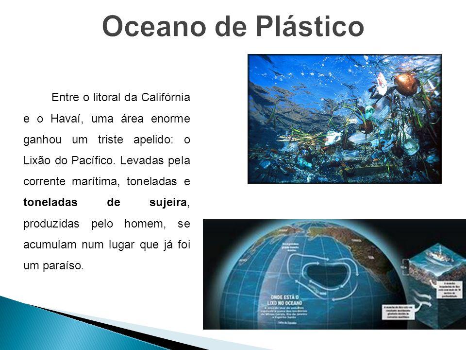 Entre o litoral da Califórnia e o Havaí, uma área enorme ganhou um triste apelido: o Lixão do Pacífico. Levadas pela corrente marítima, toneladas e to