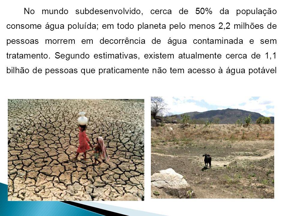 No mundo subdesenvolvido, cerca de 50% da população consome água poluída; em todo planeta pelo menos 2,2 milhões de pessoas morrem em decorrência de á