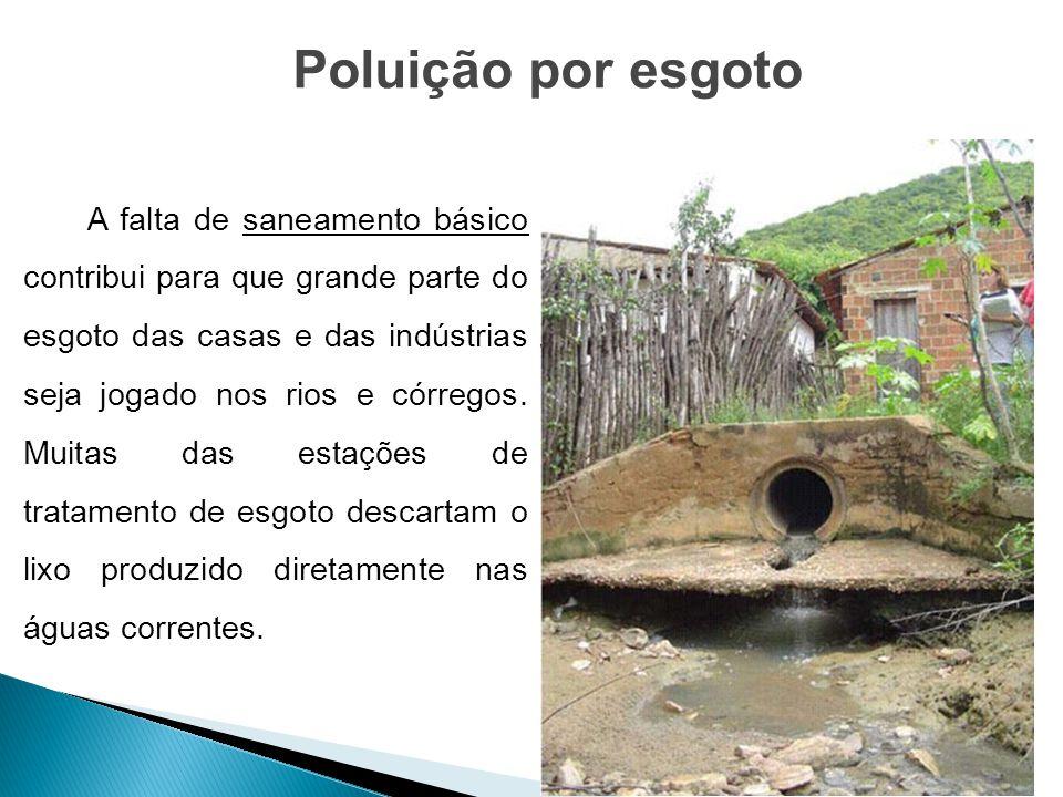 A falta de saneamento básico contribui para que grande parte do esgoto das casas e das indústrias seja jogado nos rios e córregos. Muitas das estações