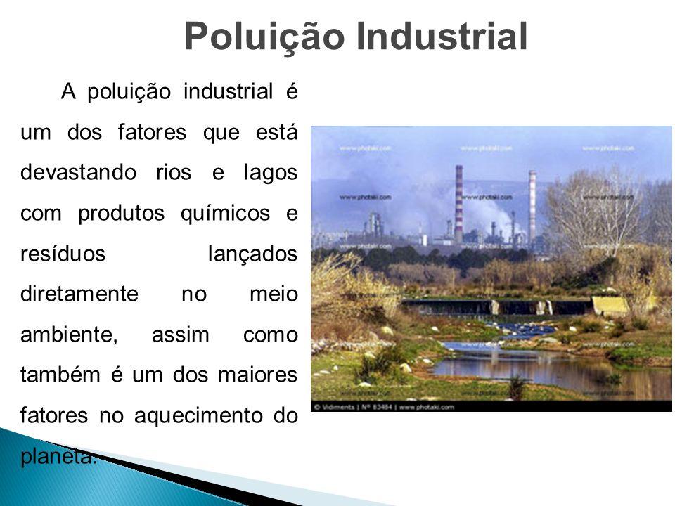 A poluição industrial é um dos fatores que está devastando rios e lagos com produtos químicos e resíduos lançados diretamente no meio ambiente, assim