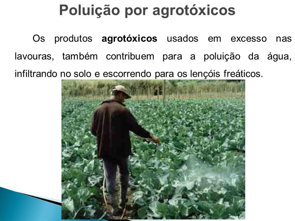 Os produtos agrotóxicos usados em excesso nas lavouras, também contribuem para a poluição da água, infiltrando no solo e escorrendo para os lençóis fr