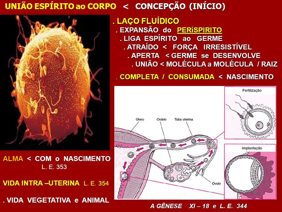 IMAGENS DO ALÉM HEIGORINA CUNHA COLONIA NOSSO LAR COLONIA NOSSO LAR PAVILHÃO PAVILHÃO RESTRINGIMENTO RESTRINGIMENTO.