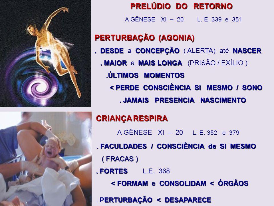 CONCEPÇÃO (INÍCIO) UNIÃO ESPÍRITO ao CORPO < CONCEPÇÃO (INÍCIO).