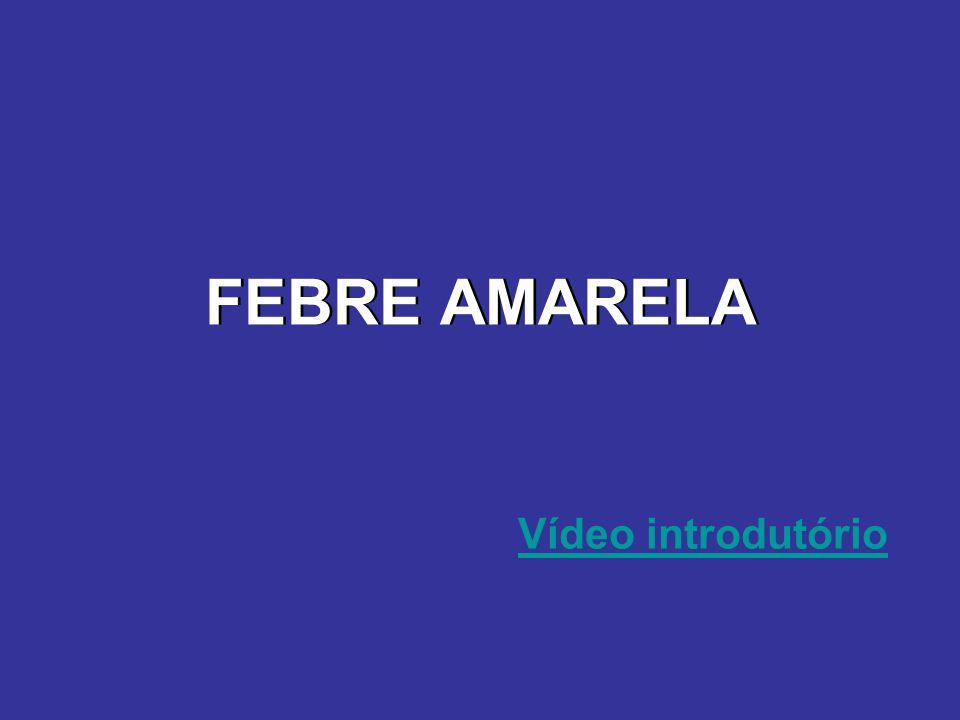 FEBRE AMARELA Vídeo introdutório