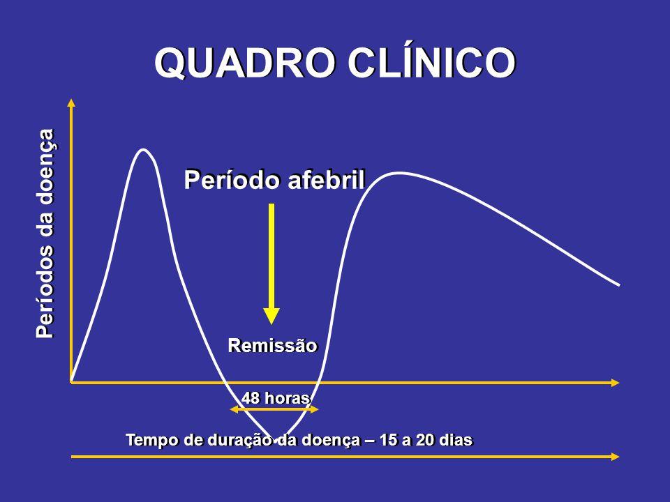 QUADRO CLÍNICO 48 horas Tempo de duração da doença – 15 a 20 dias Remissão Períodos da doença Período afebril