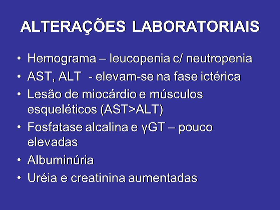 ALTERAÇÕES LABORATORIAIS Hemograma – leucopenia c/ neutropenia AST, ALT - elevam-se na fase ictérica Lesão de miocárdio e músculos esqueléticos (AST>A