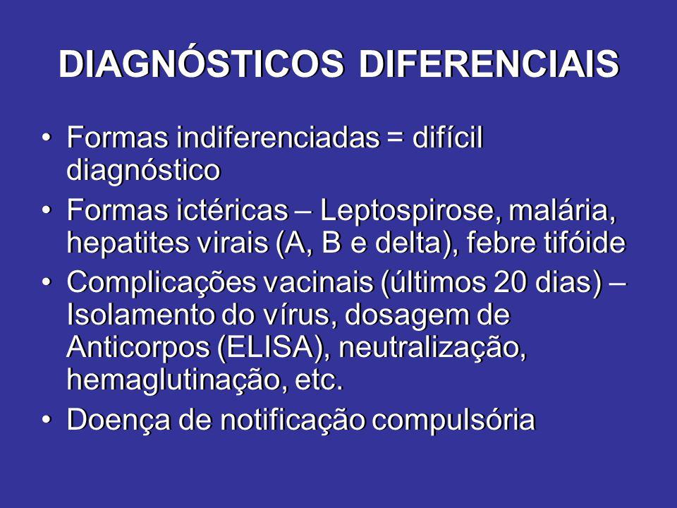 DIAGNÓSTICOS DIFERENCIAIS Formas indiferenciadas = difícil diagnóstico Formas ictéricas – Leptospirose, malária, hepatites virais (A, B e delta), febr