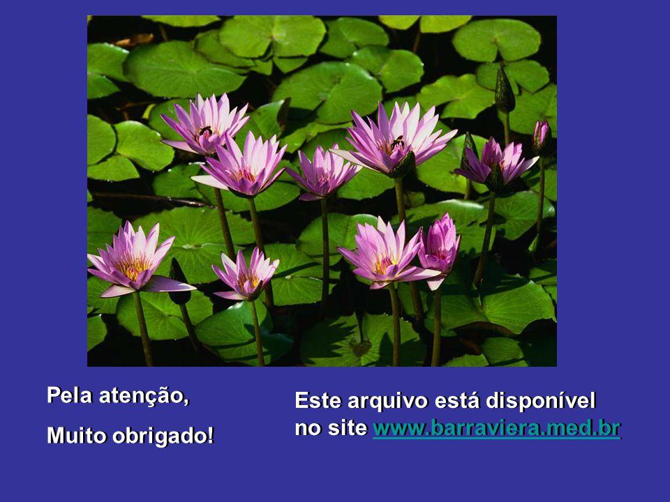 Pela atenção, Muito obrigado! Pela atenção, Muito obrigado! Este arquivo está disponível no site www.barraviera.med.brwww.barraviera.med.br Este arqui