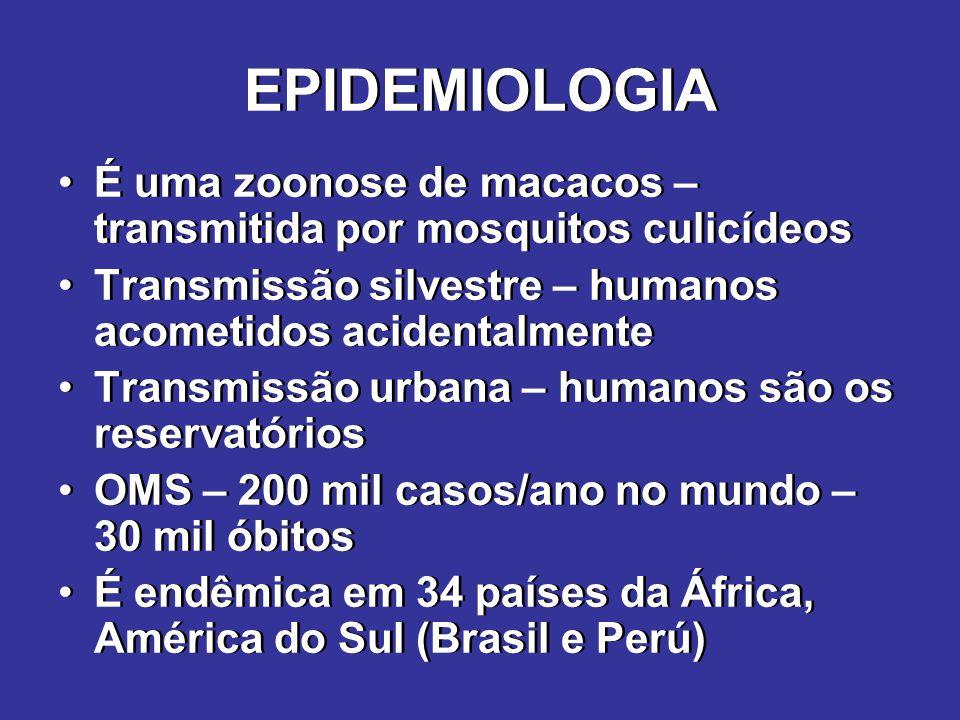 EPIDEMIOLOGIA Vetores –Urbanos – Aedes aegypti (o mesmo da dengue) –Silvestres – vários – Haemagogus Transmissão – sempre vetorial Fêmea ingere sangue (3,5??/ml de sangue) infecção do epitélio intestinal hemolinfa glândulas salivares e sistema reprodutivo transmissão pela saliva ou congênita (ovos) Vetores –Urbanos – Aedes aegypti (o mesmo da dengue) –Silvestres – vários – Haemagogus Transmissão – sempre vetorial Fêmea ingere sangue (3,5??/ml de sangue) infecção do epitélio intestinal hemolinfa glândulas salivares e sistema reprodutivo transmissão pela saliva ou congênita (ovos)