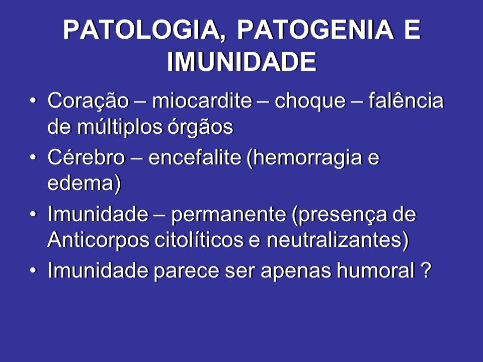 PATOLOGIA, PATOGENIA E IMUNIDADE Coração – miocardite – choque – falência de múltiplos órgãos Cérebro – encefalite (hemorragia e edema) Imunidade – pe