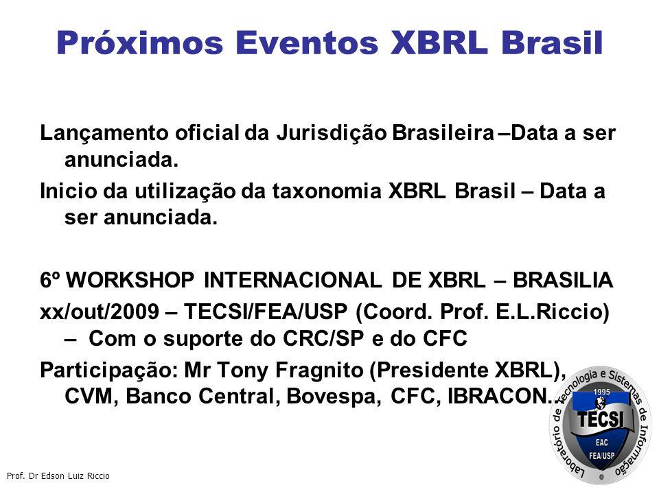 Prof.Dr Edson Luiz Riccio Equipe TECSI – criadora da Taxonomia XBRL Brasileira Prof.