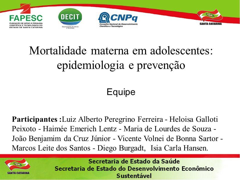 Mortalidade materna em adolescentes: epidemiologia e prevenção Equipe Participantes :Luiz Alberto Peregrino Ferreira - Heloisa Galloti Peixoto - Haimé