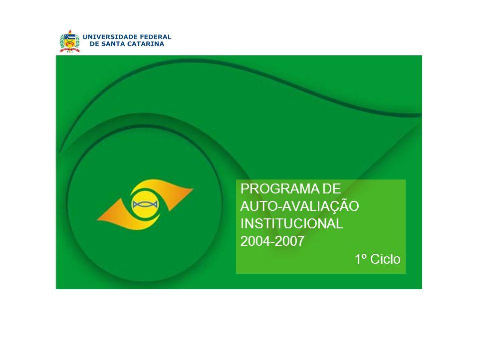 PROGRAMA DE AUTO-AVALIAÇÃO INSTITUCIONAL 2004-2007 1º Ciclo