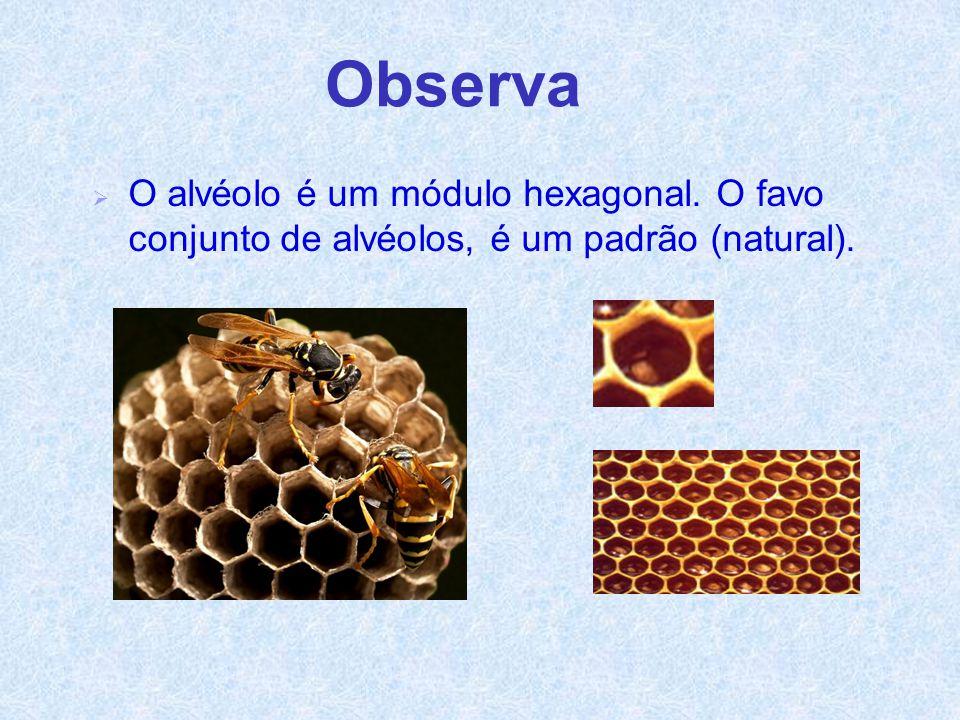 Observa  O alvéolo é um módulo hexagonal. O favo conjunto de alvéolos, é um padrão (natural).