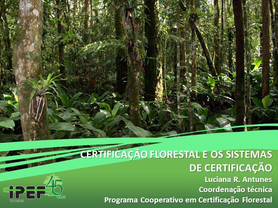 CERTIFICAÇÃO FLORESTAL E OS SISTEMAS DE CERTIFICAÇÃO Luciana R. Antunes Coordenação técnica Programa Cooperativo em Certificação Florestal