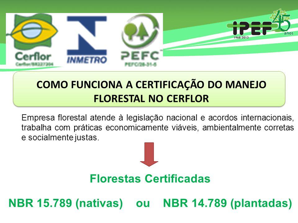 COMO FUNCIONA A CERTIFICAÇÃO DO MANEJO FLORESTAL NO CERFLOR Empresa florestal atende à legislação nacional e acordos internacionais, trabalha com práticas economicamente viáveis, ambientalmente corretas e socialmente justas.