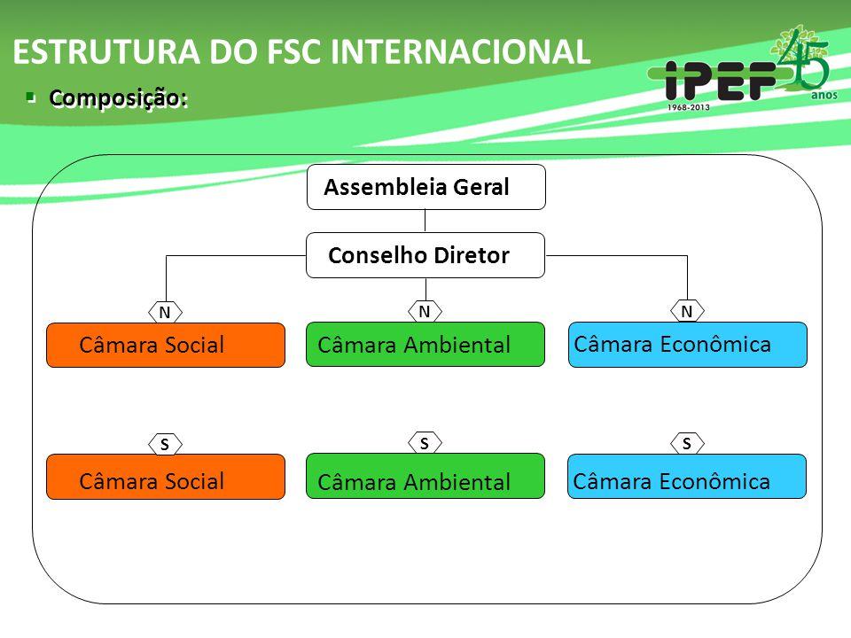 ESTRUTURA DO FSC INTERNACIONAL Assembleia Geral Conselho Diretor Câmara Ambiental Câmara Econômica Câmara Social Câmara Ambiental Câmara Econômica Câm