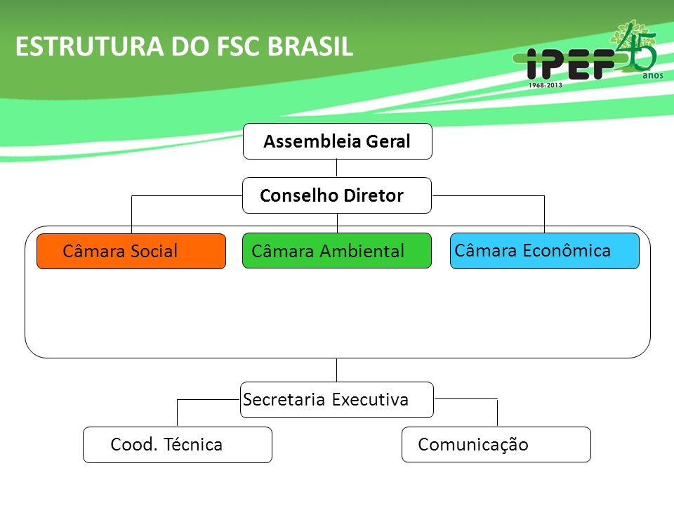 ESTRUTURA DO FSC BRASIL Assembleia Geral Conselho Diretor Câmara Ambiental Câmara Econômica Câmara Social Secretaria Executiva Comunicação Cood. Técni
