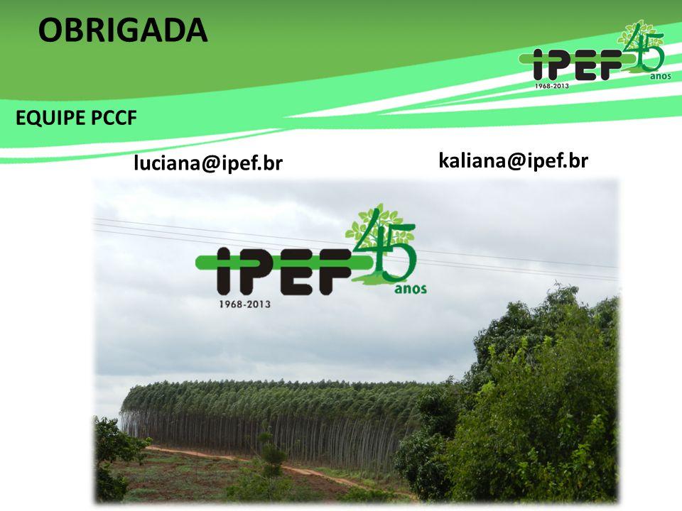OBRIGADA luciana@ipef.br kaliana@ipef.br EQUIPE PCCF