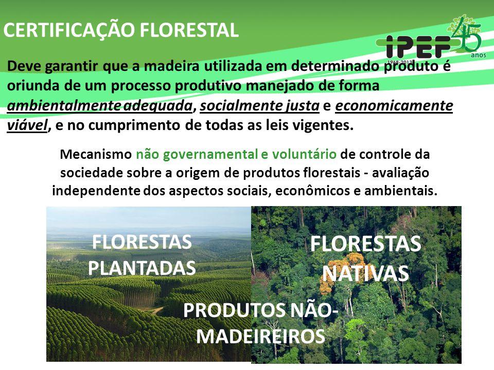 CERTIFICAÇÃO FLORESTAL Deve garantir que a madeira utilizada em determinado produto é oriunda de um processo produtivo manejado de forma ambientalment