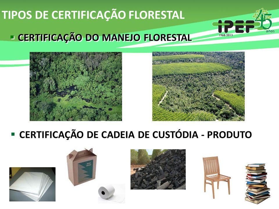 TIPOS DE CERTIFICAÇÃO FLORESTAL  CERTIFICAÇÃO DO MANEJO FLORESTAL  CERTIFICAÇÃO DE CADEIA DE CUSTÓDIA - PRODUTO