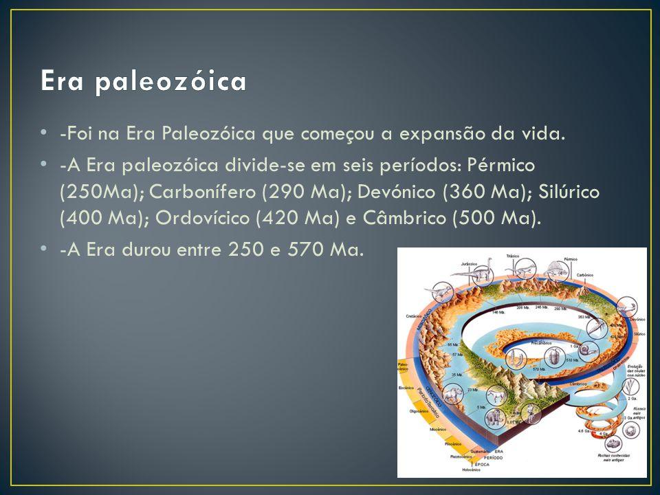 -Foi na Era Paleozóica que começou a expansão da vida.