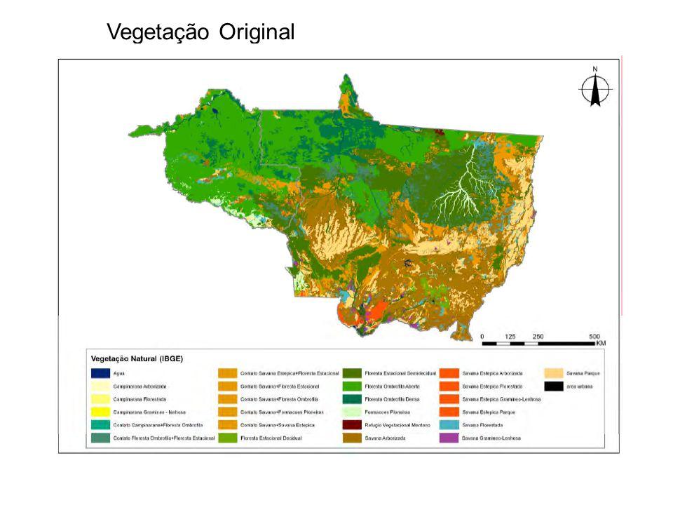Vegetação Original