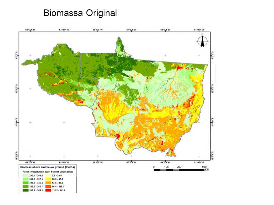 Biomassa Original