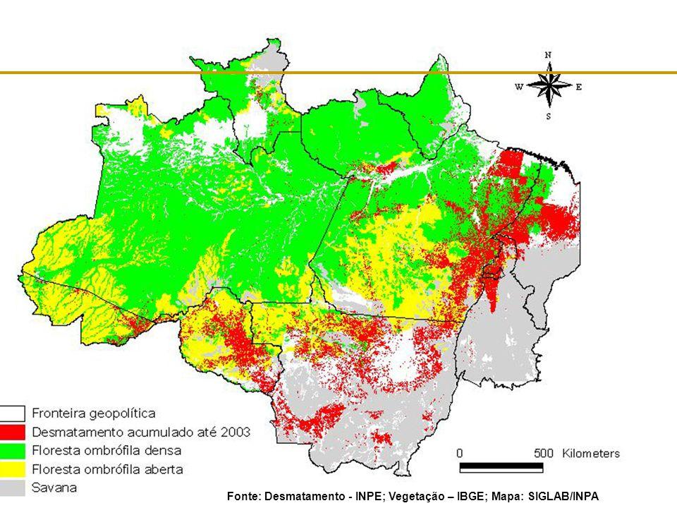 Fonte: Desmatamento - INPE; Vegetação – IBGE; Mapa: SIGLAB/INPA