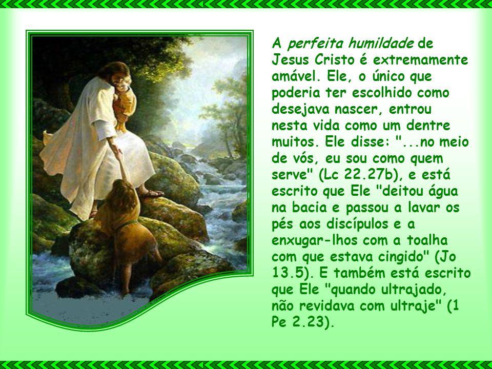 Cristo também possui perfeita compaixão. Pensemos apenas no