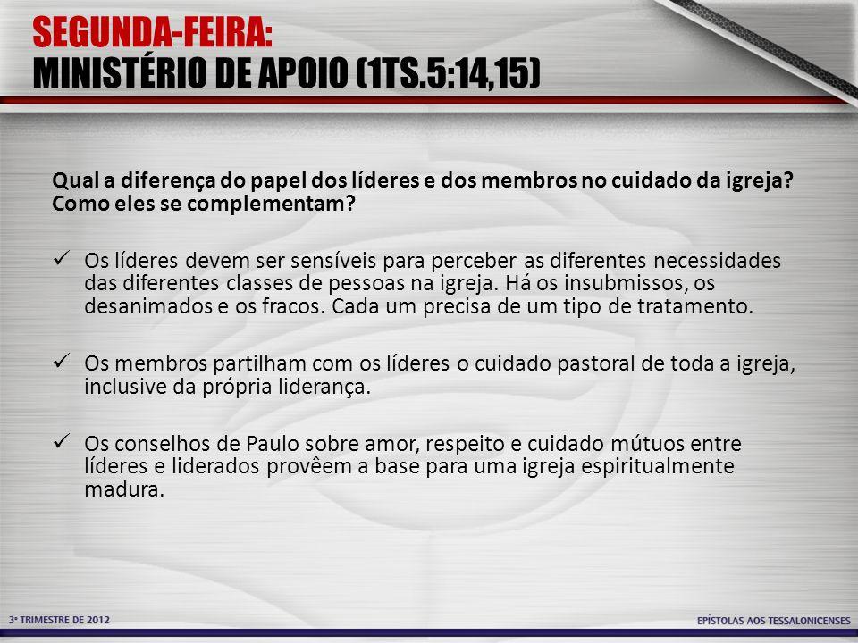 SEGUNDA-FEIRA: MINISTÉRIO DE APOIO (1TS.5:14,15) Qual a diferença do papel dos líderes e dos membros no cuidado da igreja.