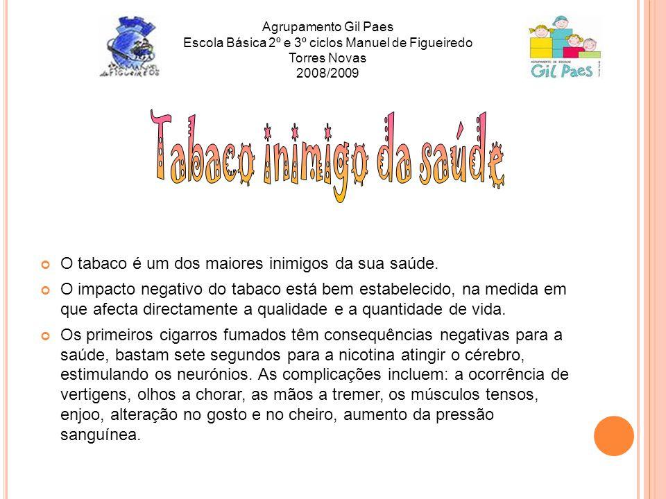 Agrupamento Gil Paes Escola Básica 2º e 3º ciclos Manuel de Figueiredo Torres Novas 2008/2009