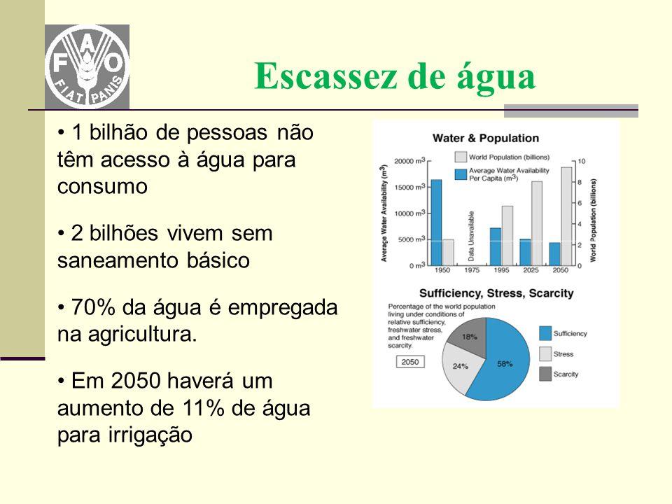 Escassez de água 1 bilhão de pessoas não têm acesso à água para consumo 2 bilhões vivem sem saneamento básico 70% da água é empregada na agricultura.