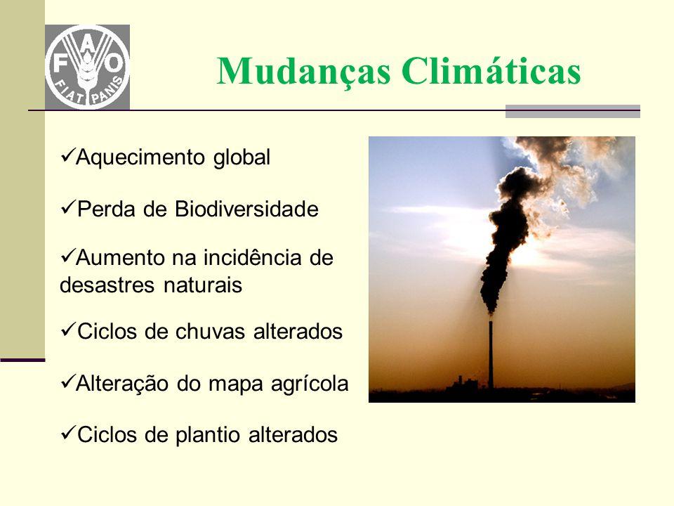 Mudanças Climáticas Aquecimento global Perda de Biodiversidade Aumento na incidência de desastres naturais Ciclos de chuvas alterados Alteração do map