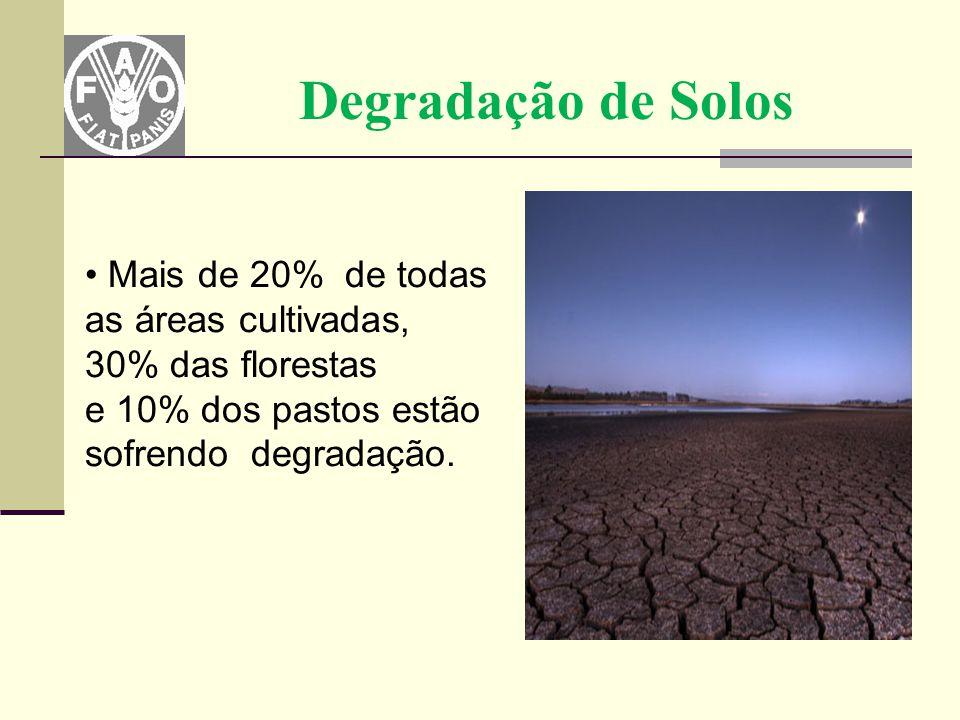Degradação de Solos Mais de 20% de todas as áreas cultivadas, 30% das florestas e 10% dos pastos estão sofrendo degradação.