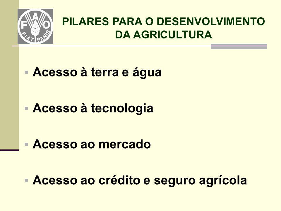  Acesso à terra e água  Acesso à tecnologia  Acesso ao mercado  Acesso ao crédito e seguro agrícola PILARES PARA O DESENVOLVIMENTO DA AGRICULTURA