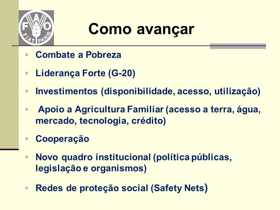  Combate a Pobreza  Liderança Forte (G-20)  Investimentos (disponibilidade, acesso, utilização)  Apoio a Agricultura Familiar (acesso a terra, águ