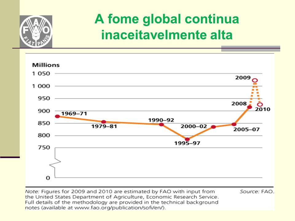 Mudanças Climáticas Aquecimento global Perda de Biodiversidade Aumento na incidência de desastres naturais Ciclos de chuvas alterados Alteração do mapa agrícola Ciclos de plantio alterados