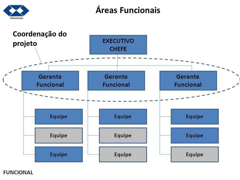 Áreas Funcionais EXECUTIVO CHEFE Gerente Funcional Gerente Funcional Gerente Funcional Equipe Coordenação do projeto FUNCIONAL