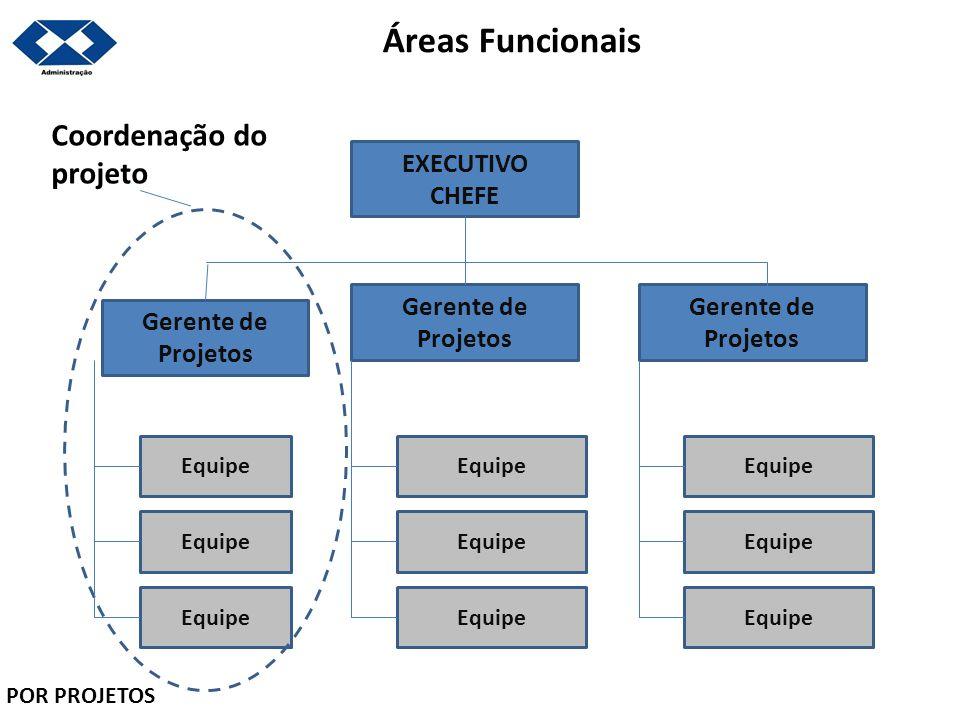 Áreas Funcionais EXECUTIVO CHEFE Gerente de Projetos Gerente de Projetos Gerente de Projetos Equipe Coordenação do projeto POR PROJETOS
