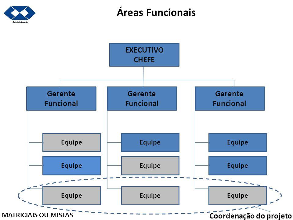 Áreas Funcionais EXECUTIVO CHEFE Gerente Funcional Gerente Funcional Gerente Funcional Equipe MATRICIAIS OU MISTAS Coordenação do projeto
