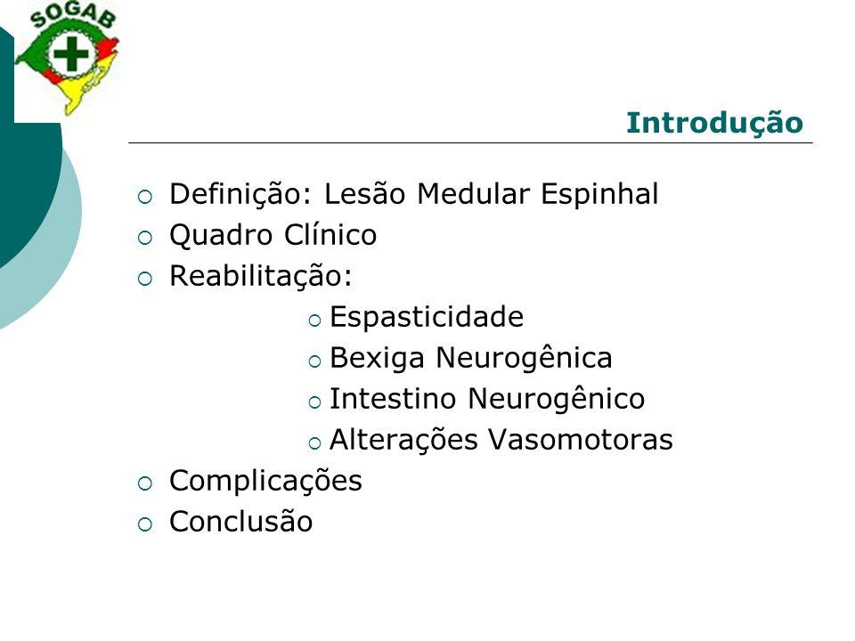 Introdução  Definição: Lesão Medular Espinhal  Quadro Clínico  Reabilitação:  Espasticidade  Bexiga Neurogênica  Intestino Neurogênico  Alteraç
