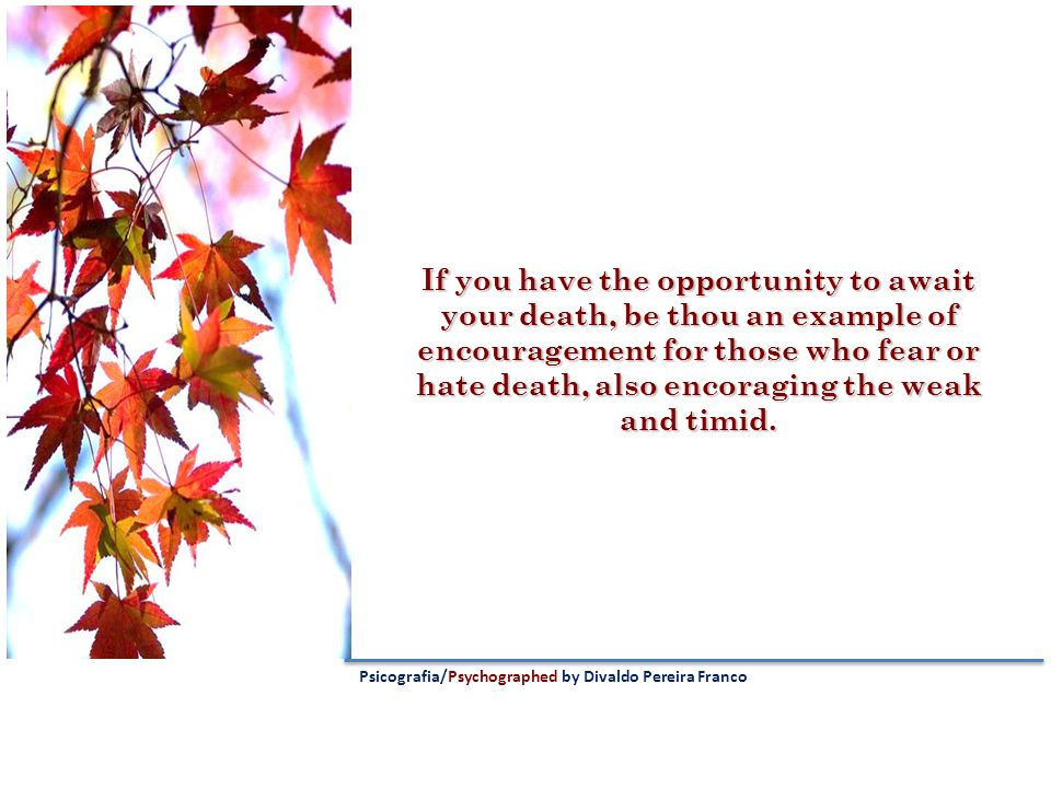 If you have the opportunity to await your death, be thou an example of encouragement for those who fear or hate death, also encoraging the weak and timid.