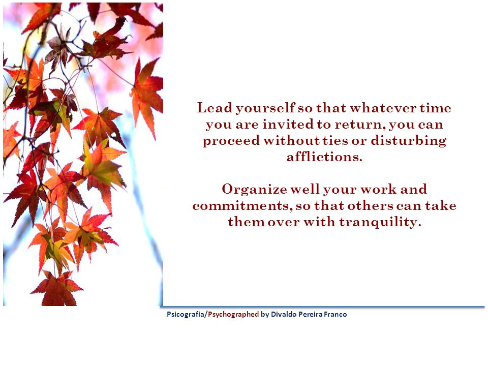 Lead yourself so that whatever time you are invited to return, you can proceed without ties or disturbing afflictions.