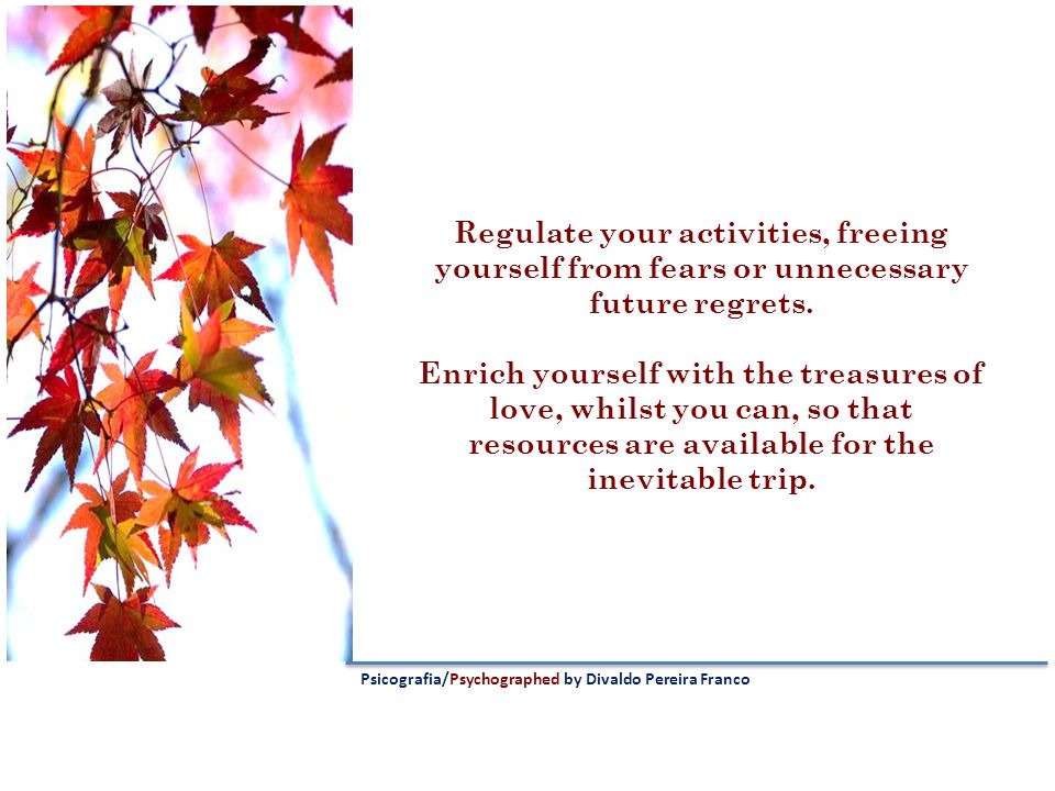 Regulate your activities, freeing yourself from fears or unnecessary future regrets.
