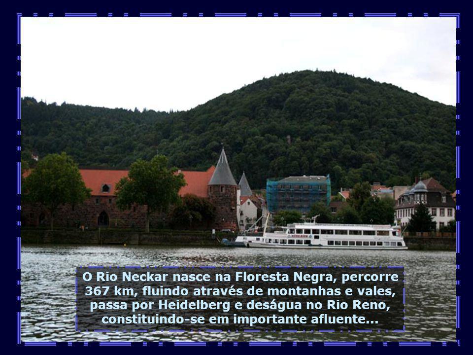 O Rio Neckar nasce na Floresta Negra, percorre 367 km, fluindo através de montanhas e vales, passa por Heidelberg e deságua no Rio Reno, constituindo-se em importante afluente...