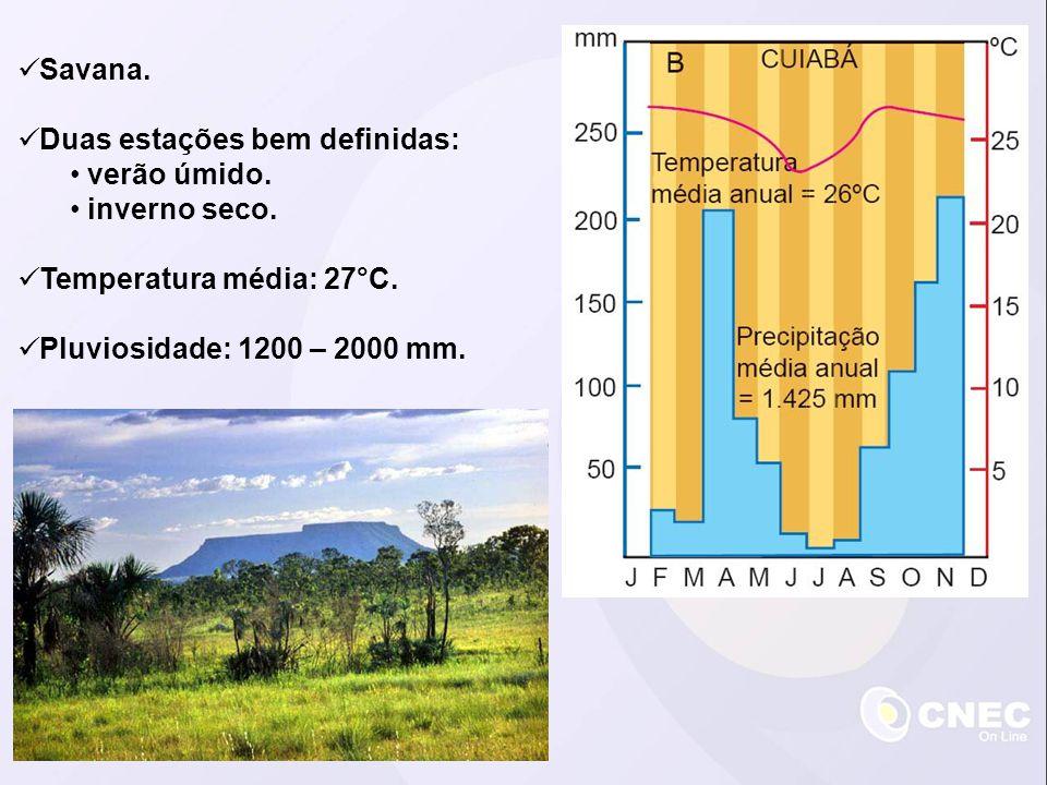 Savana. Duas estações bem definidas: verão úmido. inverno seco. Temperatura média: 27°C. Pluviosidade: 1200 – 2000 mm.