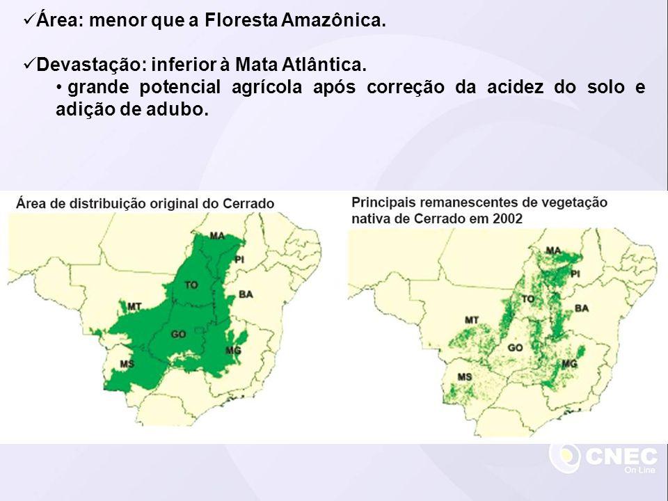 Área: menor que a Floresta Amazônica. Devastação: inferior à Mata Atlântica. grande potencial agrícola após correção da acidez do solo e adição de adu
