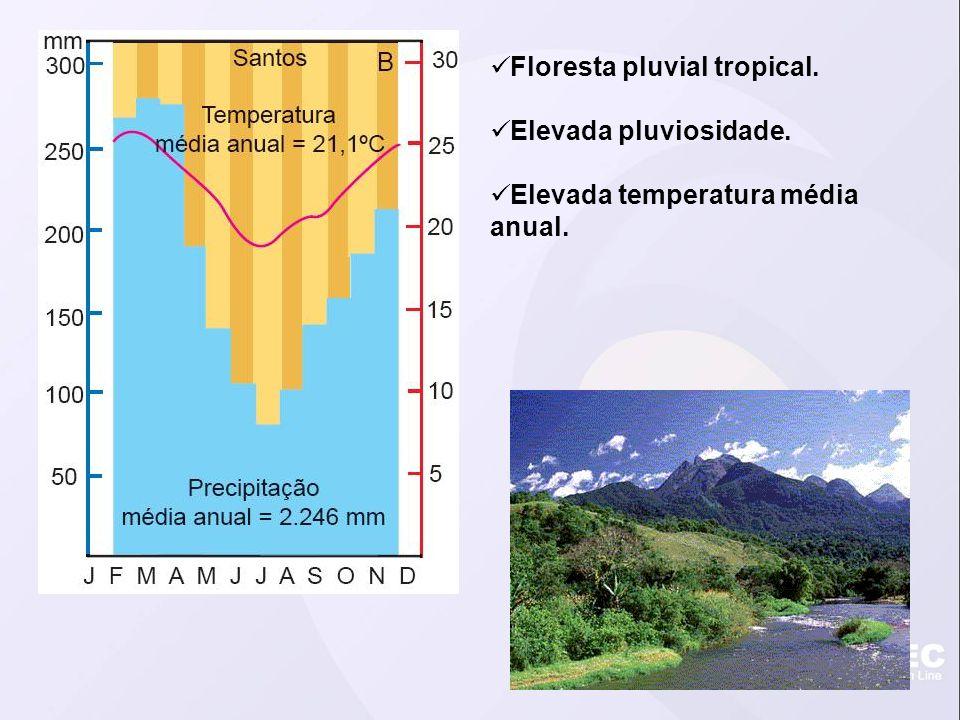 Floresta pluvial tropical. Elevada pluviosidade. Elevada temperatura média anual.