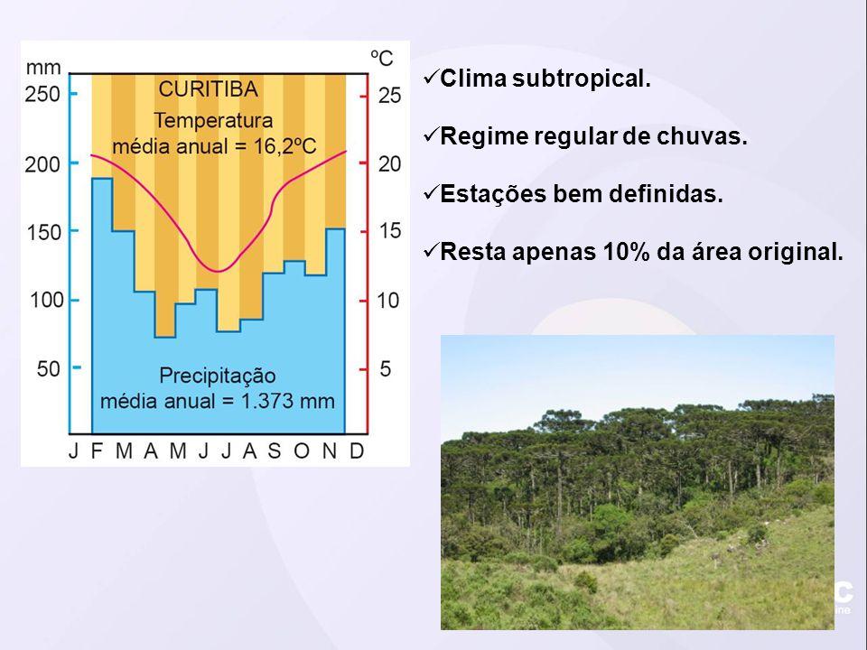 Clima subtropical. Regime regular de chuvas. Estações bem definidas. Resta apenas 10% da área original.